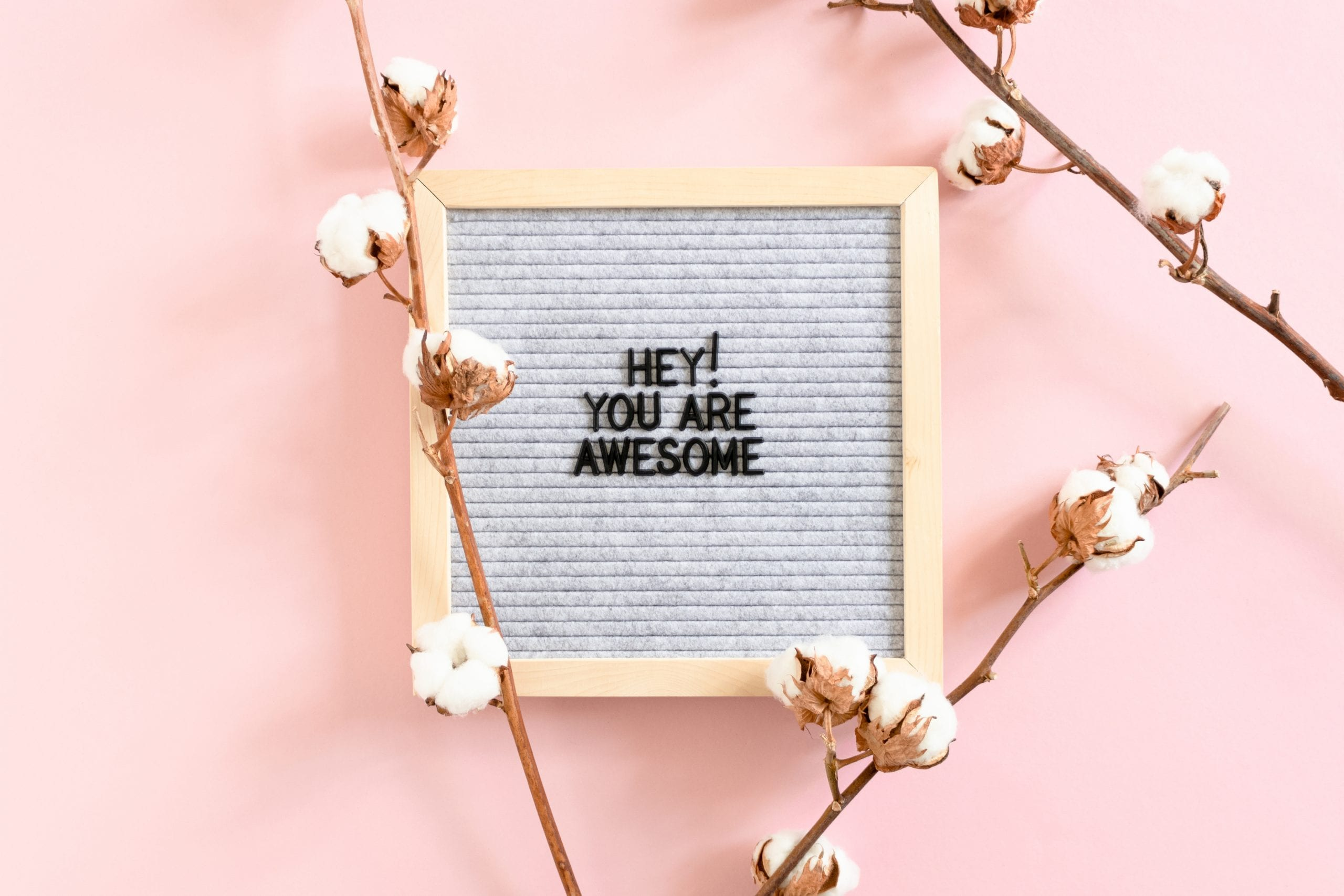 Cotton branches and letterboard with quote Hey you are awesome